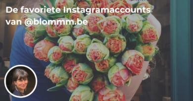 Instafette: Paulien van bloemenzaak blommm